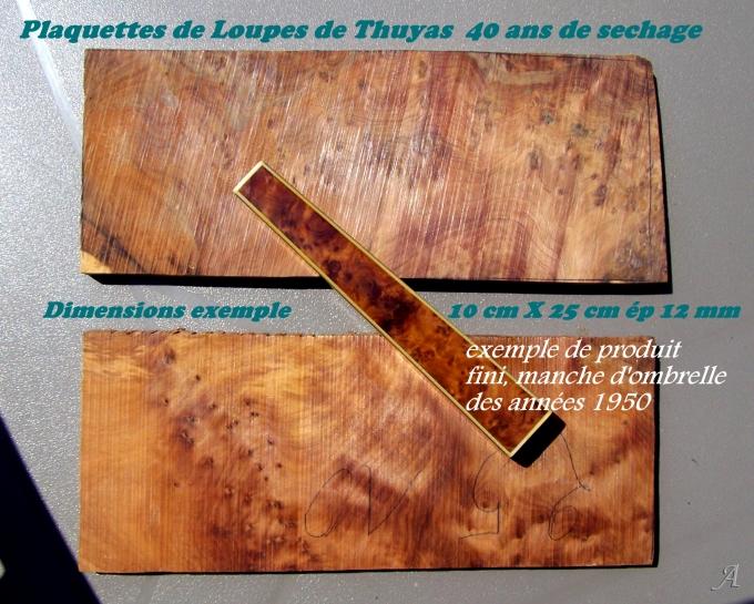 Plaquettes de loupe de thuyas anciennes - Chille