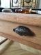 Table de drapier - 3