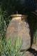 Jarre de Biot en terre cuite du XIXe siècle - 3