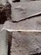 Escalier hélicoïdal en pierre de taille - 5