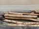 Stock de bois précieux - 2