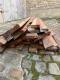 Stock de bois précieux - 5